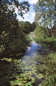 Pocklington Canal near Melbourne © John Lawton, Aug 2003