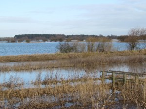 Wheldrake Ings & Pocklington Canal from East Cottingwith © John Lawton, Feb 2013
